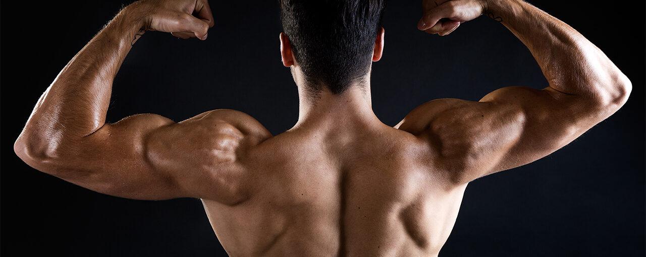 Bodybuilding-Posing