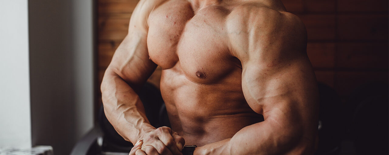 Types of Muscle Growth