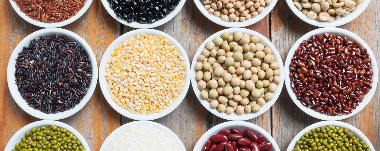 PROTEIN- PLANT SOURCES