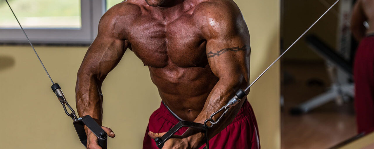 Striated Pecs Workout