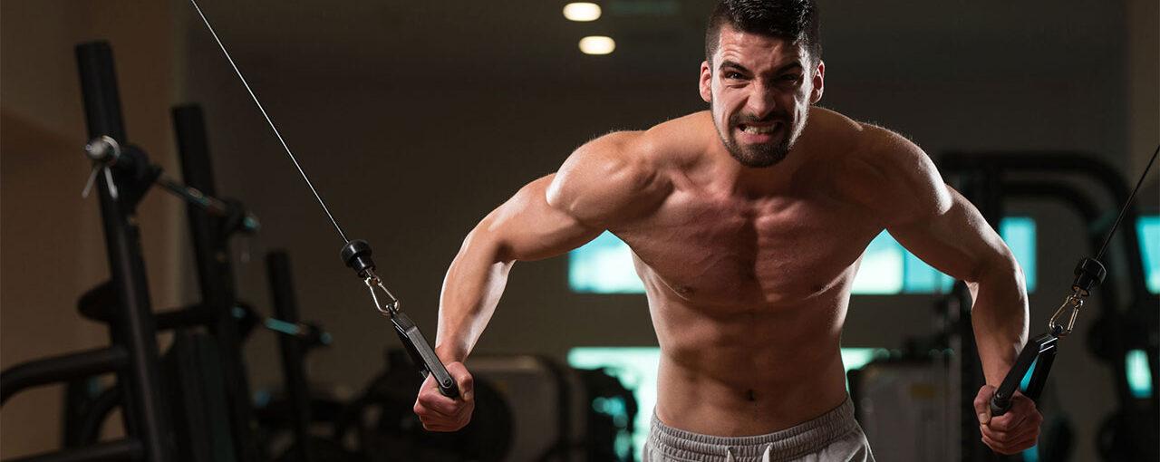 Shredding Phase Chest Workout